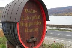 Mittelrhein; wijngaarden bij de Bopparder Hamm.