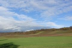 Rheinhessen; de Hundertgulden wijngaard in Appenheim.