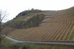 Nahe; wijngaarden van Gut Hermannsberg in Niederhausen.