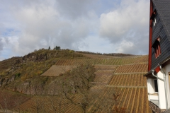 Nahe; wijngaarden van Gut Hermannsberg.