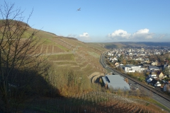 Ahr; zicht op het Ahrdal bij Bad Neuenahr. Hier komt voornamelijk rode Spätburgunder (pinot noir) vandaan.