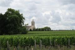 Eindeloze wijngaarden