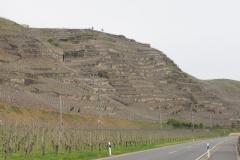 Steilhang bij Winningen.