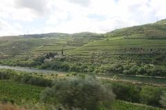 Langs de Douro wijngaarden. 2 uur lang onafzienbare wijngaarden voor Douro-wijn en Port.