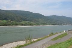 Wijngaarden langs de Donau.