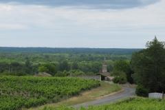 Bij Bommes, vlakbij Sauternes (ook dessertwijn)